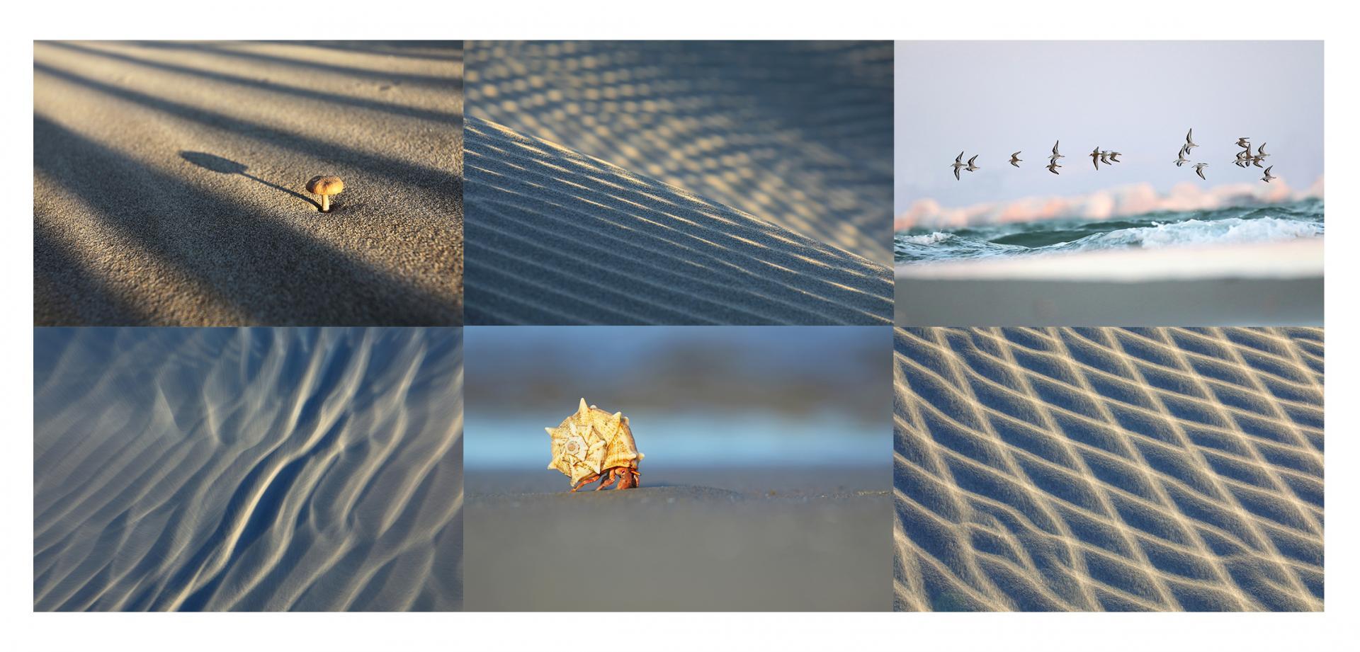 Les plages de l'Espiguette